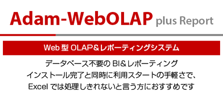 Web型OLAP&レポーティング Adam-WebOLAP plus Report